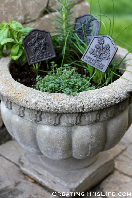 Potted herb garden