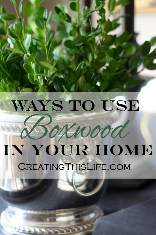 ways to use boxwood to decorate