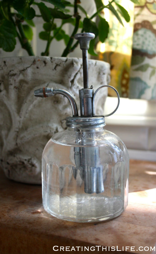 Antique glass plant mister