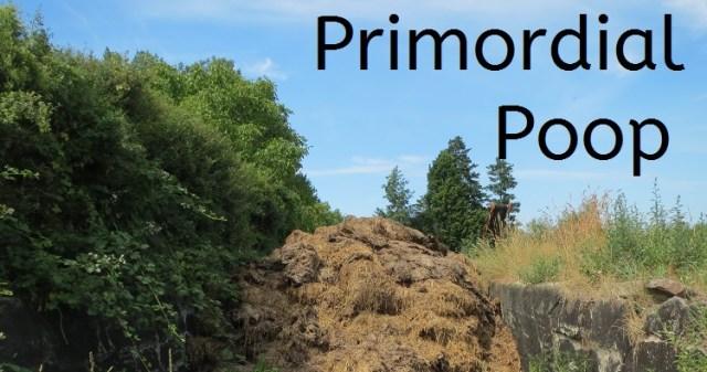 Primordial Poop