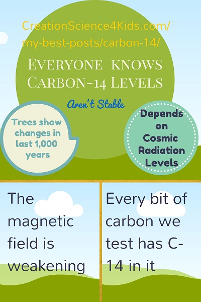 CS4K-Carbon-14-infographic