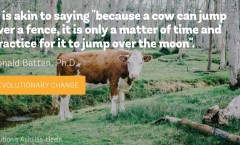 Cow Jumping analogy, Donald Batten, Ph.D.
