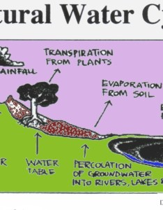 Water cycle drawing wikicommons also dry lightning archives creation science kids rh creationscience kids