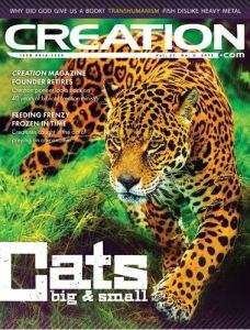 CMI-Cats Magazine Cover