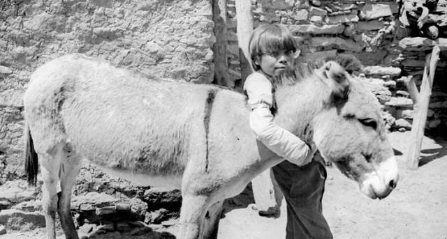 Hopi boy hugging his burro, c. 1900, WikiCommons