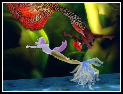 mer-animals-10