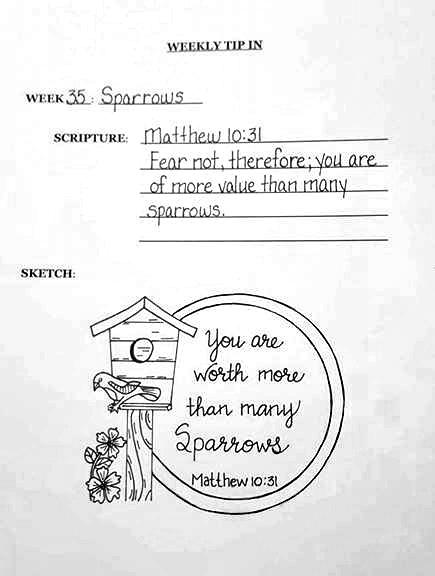 #35 Sparrow sketch