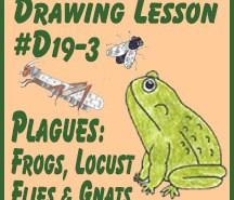#D19-3 Frog