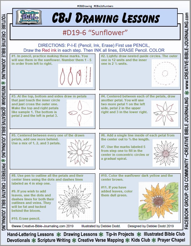 D19-6-Sunflower