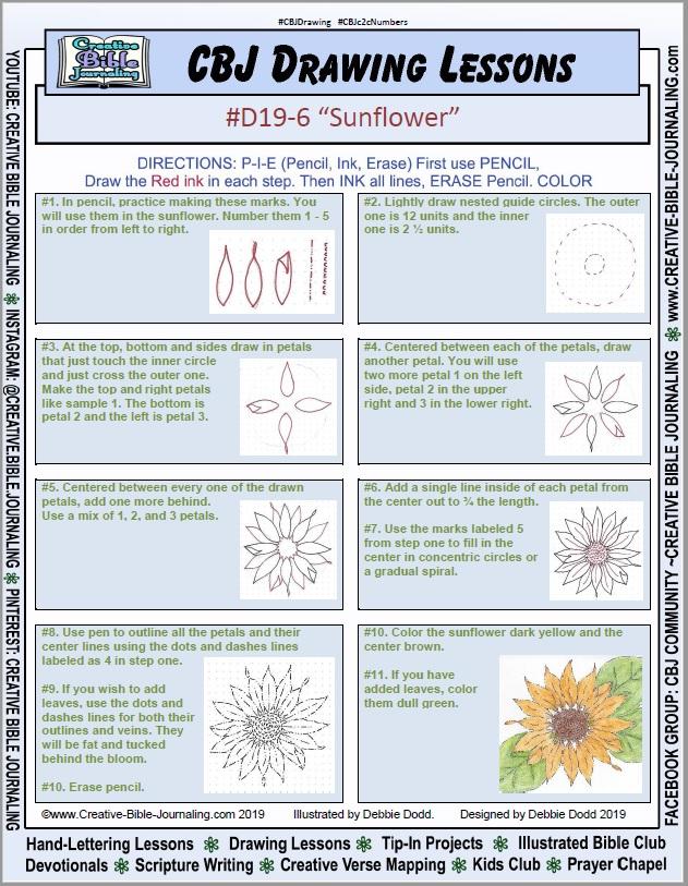 D19-6-Sunflower