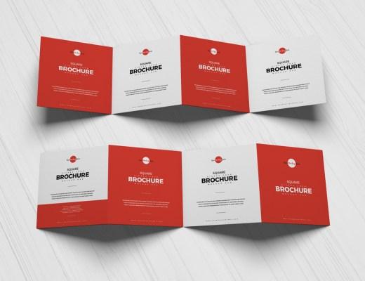 Free Four Fold Brochure Mockup