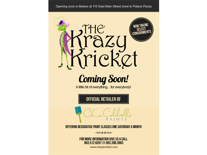 Krazy Kricket Graphic Design