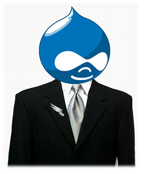 drupal-developer