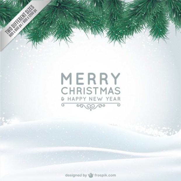 05_christmas-card-with-snow-and-branches_23-2147500618
