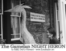 night-heron-Gamelan