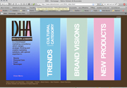 Debra Holstein Associates v1
