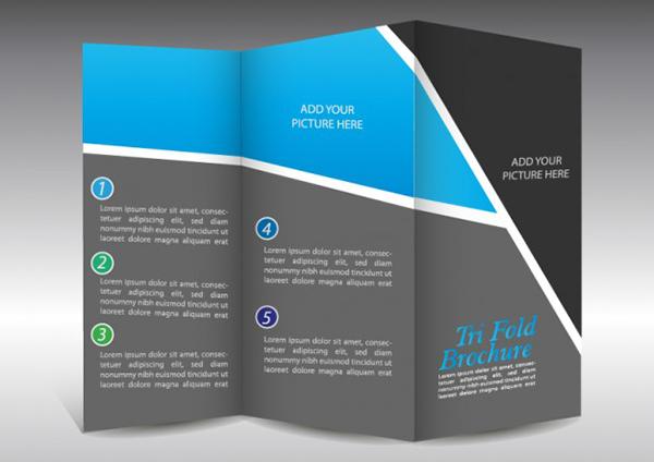 Basic Brochure Templates Ideal Vistalist Co