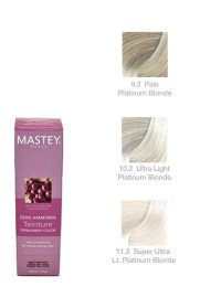 Mastey Teinture Platinum  Creative Beauty Concepts