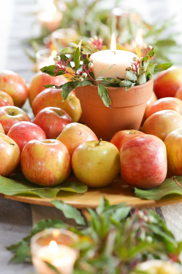 Image result for fall apple decor