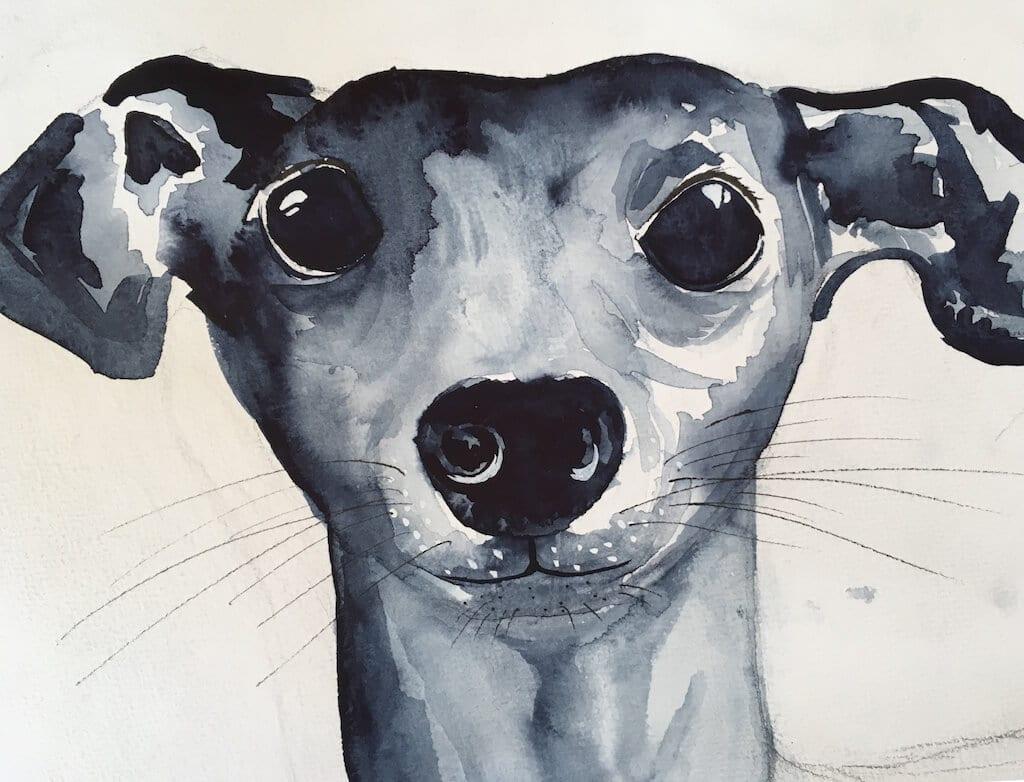 du siehst ein aquarell von dodo kresse es heißt der blaue karfunkelhund