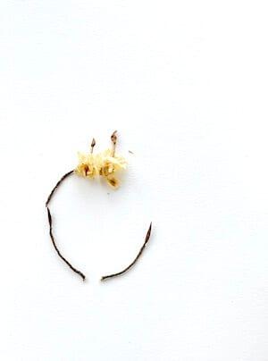 Man sieht ein paar weitere Zweige des Collagebildes Happy Mind von Dodo Kresse