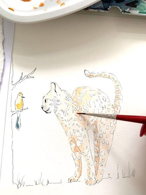 Du siehst die Koloration der Bengal Katze mit Aquarellfarben