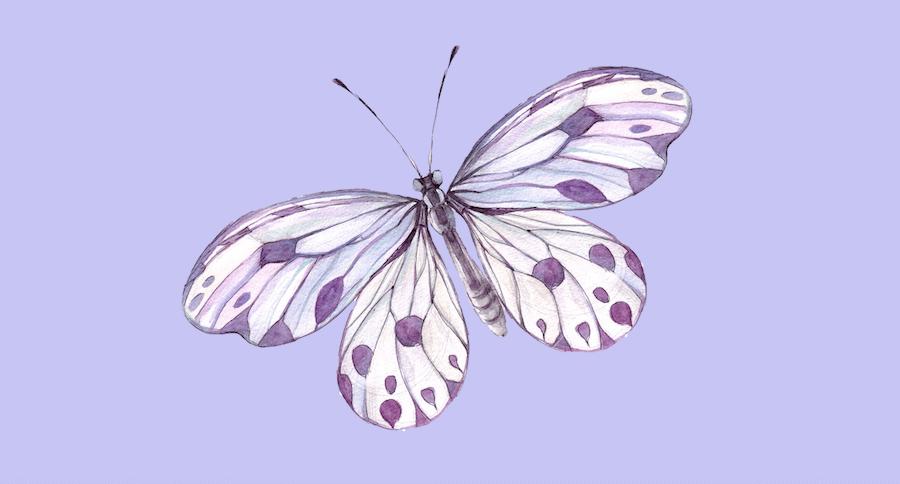 Passend zum Frühlings-Gedicht ist hier ein Schmetterling in Aquarell in den Farben Lavendel, Lila und Blau abgebildet. Der Hintergrund ist ein zartes Blaulavendel.