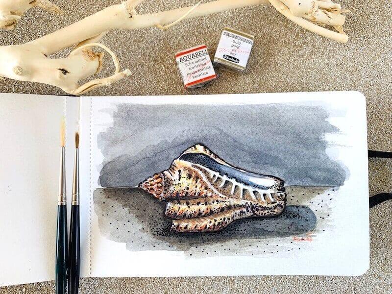 Du siehst das fertige Aquarell einer Muschel, gemalt von Dodo Kresse für Creative Club.