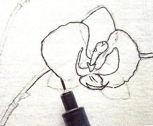 Mit Tuschestift die Outlines nachziehen