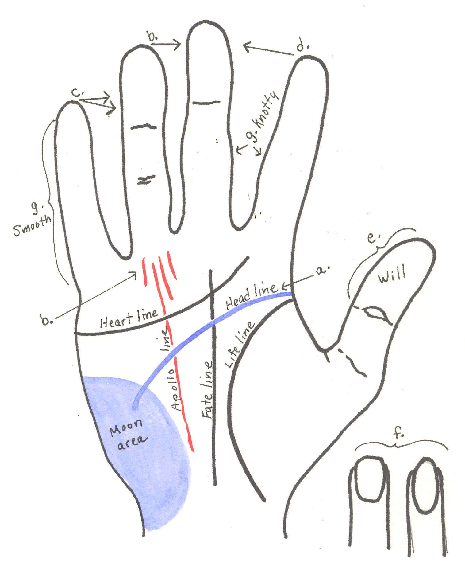 palmistry diagram marriage line goldwing 1500 wiring palm reading pendulum elsavadorla