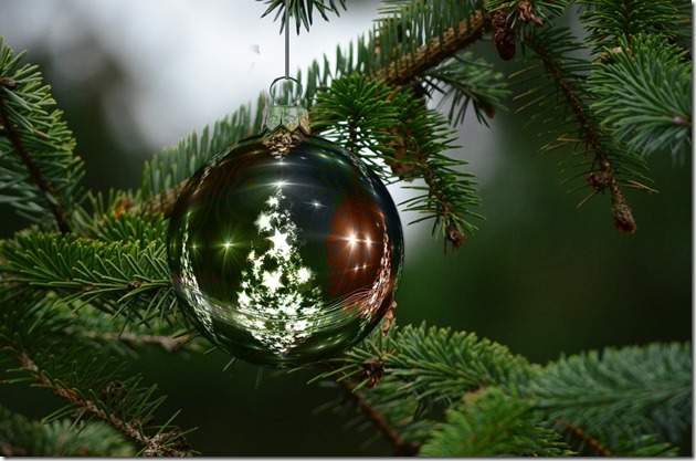 Staying healthy this holiday season - 8 tips