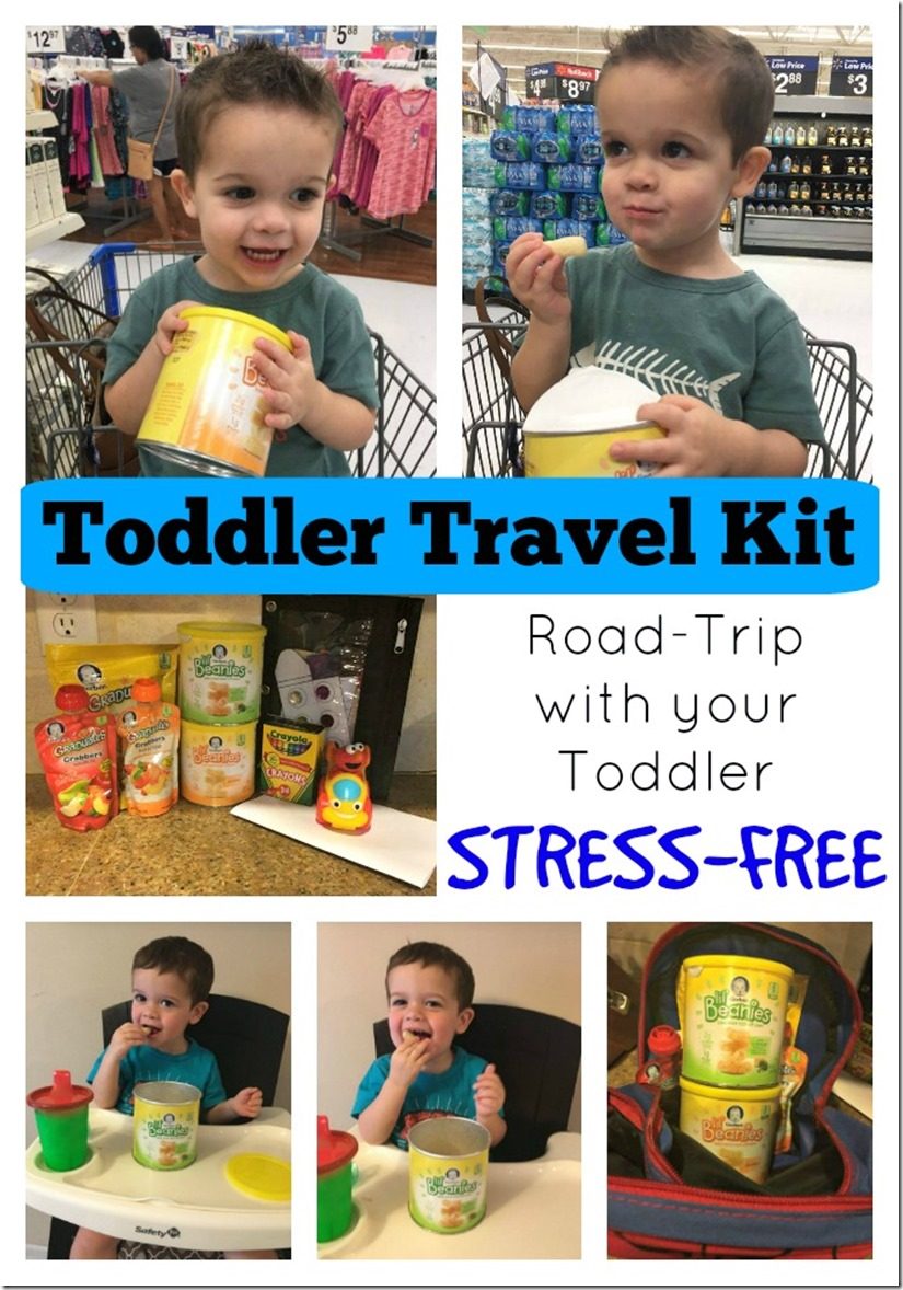 Toddler Travel Kit - Road Trip with Your Toddler Stress Free