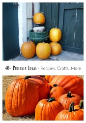 40+ Amazing Pumpkin Ideas – Recipes, Crafts, and More!