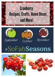cranberry recipes, crafts, home decor, and more