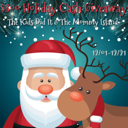 $300 Holiday Cash Giveaway