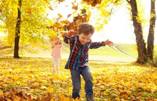 Fall Family Fun Bucket List