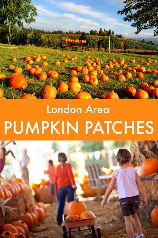 london area pumpkin patches southwest ontario