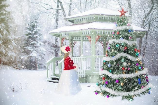 the joy of a solitary christmas celebration