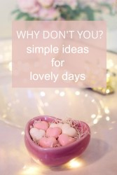 Why Don't You? – Week of February 18th