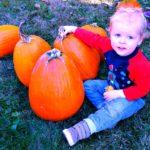 15 No Carve Pumpkin Decorating Ideas