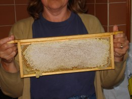 picture of a frame of comb honey