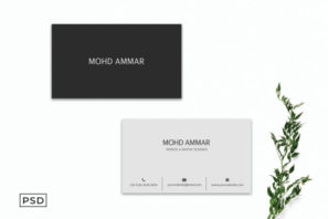 Creative Minimal Business Card Template V2