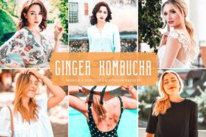 Ginger Kombucha Mobile & Desktop Lightroom Presets