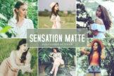 Last preview image of Sensation Matte Photoshop Actions