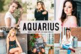 Last preview image of Aquarius Mobile & Desktop Lightroom Presets