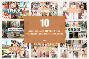 picture of 10 Analog and Retro Film Inspired Lightroom Presets