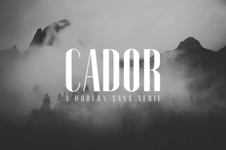 Preview image of Cador Sans Serif Font Family Pack