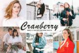 Last preview image of Cranberry Mobile & Desktop Lightroom Presets