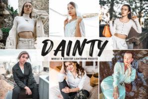Dainty Mobile & Desktop Lightroom Presets