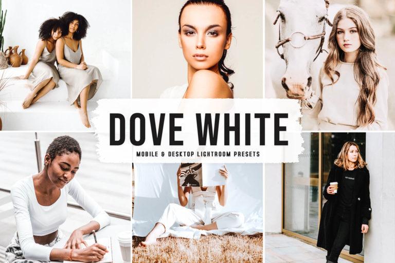 Preview image of Dove White Mobile & Desktop Lightroom Presets